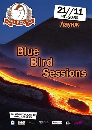 Blue Bird Sessions в Гусе